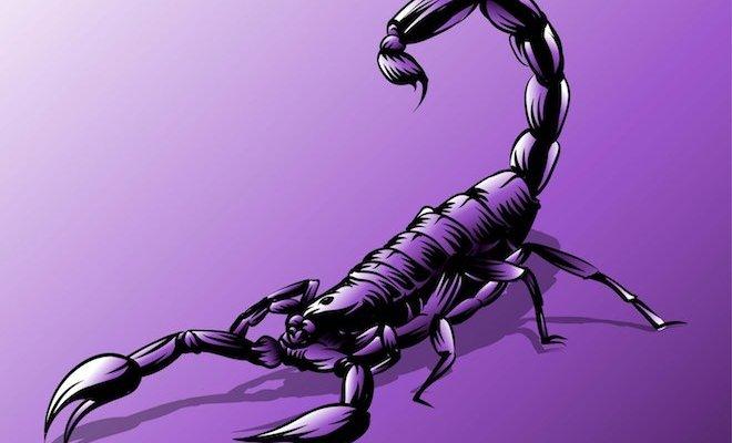 Камни для Скорпиона подбираются с учетом основных характеристик знака